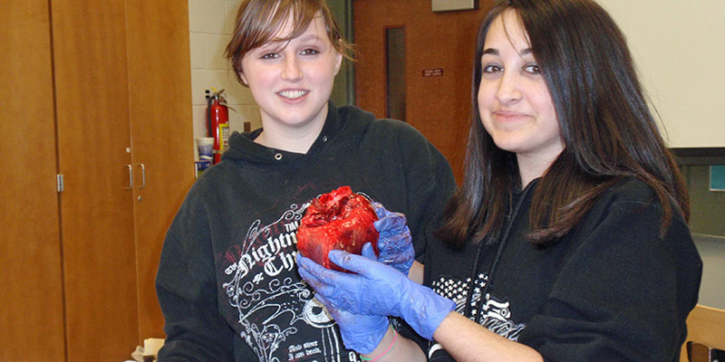 Middle College Heart Disect